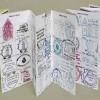 Pilgerpapiere erklärt – Empfehlungsschreiben, Pilgerpass, Credencial und Compostela